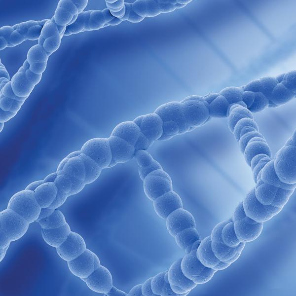integrative_genetics_web_600x600